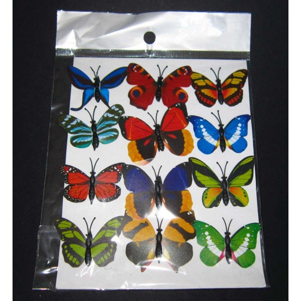 Malý motýl XM2 - plato 12 ks